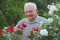 Penzijní pojištění a jeho vliv na výši důchodu